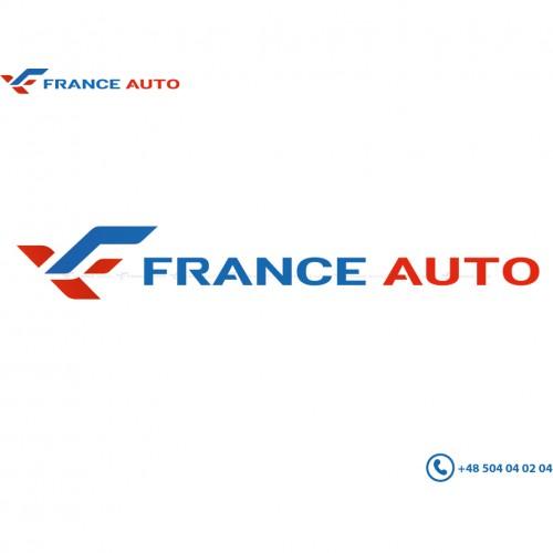 Temic Renault Scenic 2 /& Grand Scenic 2 03-09 Moteur lève-vitre avant droit